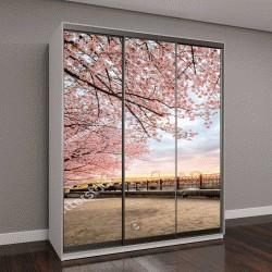 """Шкаф купе с фотопечатью """"вишни в цвету в реке Сумида, Токио, Япония"""""""