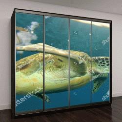 """Шкаф купе с фотопечатью """"черепаха в океане"""""""