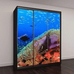 """Шкаф купе с фотопечатью """"Подводный коралловый риф с тропическими рыбами в океане"""""""