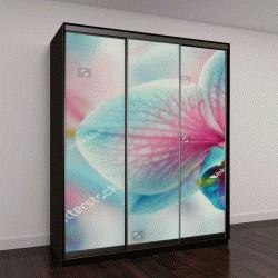 """Шкаф купе с фотопечатью """"Голубые орхидеи """""""