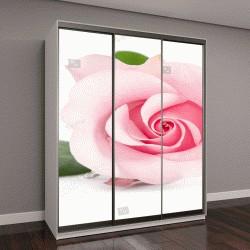 """Шкаф купе с фотопечатью """"один бутон розовая роза, изолированные на белом фоне"""""""