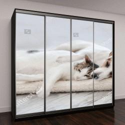 """Шкаф купе с фотопечатью """"Кошка и собака спят"""""""