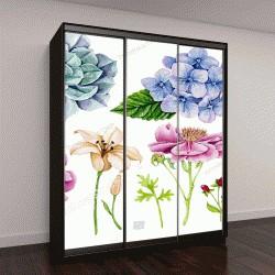 """Шкаф купе с фотопечатью """"цветы, ветки, ягоды, анемоны, гортензия, пион, лилия"""""""
