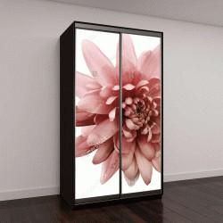 """Шкаф купе с фотопечатью """"красный цветок хризантемы"""""""