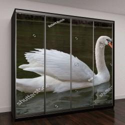 "Шкаф купе с фотопечатью ""лебедь на воде"""
