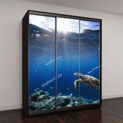 """Шкаф купе с фотопечатью """"Подводный мир дикой природы с животными"""""""