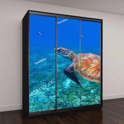 """Шкаф купе с фотопечатью """"Морская черепаха в морской воде"""""""