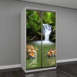 """Шкаф купе с фотопечатью """"Сибирские тигры в воде """""""