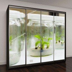 """Шкаф купе с фотопечатью """"выращивание растений в лаборатории """""""