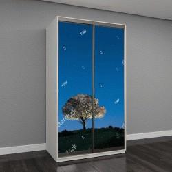 """Шкаф купе с фотопечатью """"Ночной пейзаж, дуб, звезды, облака, силуэт"""""""
