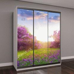 """Шкаф купе с фотопечатью """"Красивый пейзаж с весенними цветами"""""""