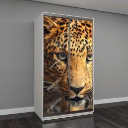 """Шкаф купе с фотопечатью """"Портрет леопарда """""""