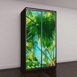 """Шкаф купе с фотопечатью """"тропические пальмовые листья на фоне неба"""""""