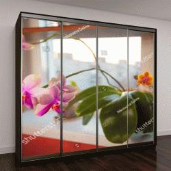 """Шкаф купе с фотопечатью """"орхидеи в горшке на белом окне"""""""