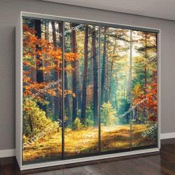 """Шкаф купе с фотопечатью """"Осенний лес, природа"""""""