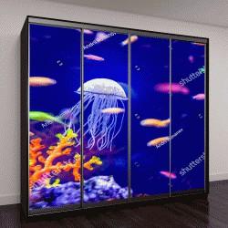 """Шкаф купе с фотопечатью """"Подводный мир аквариумных рыб"""""""