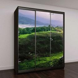 """Шкаф купе с фотопечатью """"пейзаж тропического леса и горы """""""