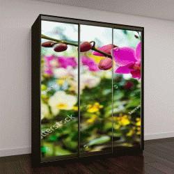 """Шкаф купе с фотопечатью """"орхидея в тропическом саду """""""