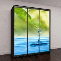 """Шкаф купе с фотопечатью """"Капля воды на фоне зеленых листьев """""""