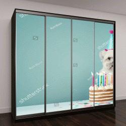 """Шкаф купе с фотопечатью """"Милая собака с партия шляпу и торт """""""