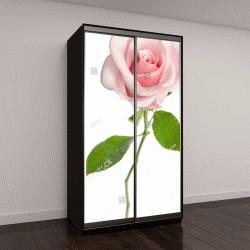 """Шкаф купе с фотопечатью """"одноместный розовая роза, изолированные на белом фоне"""""""