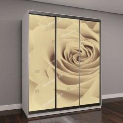 """Шкаф купе с фотопечатью """"открытая роза в цветах сепии"""""""