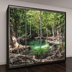 """Шкаф купе с фотопечатью """"Деревянный мост в джунглях в провинции Краби,Таиланд"""""""