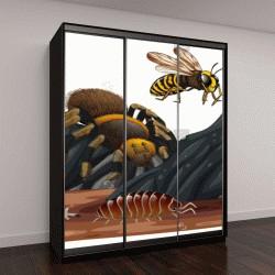 """Шкаф купе с фотопечатью """"Рептилии и насекомые в природе """""""