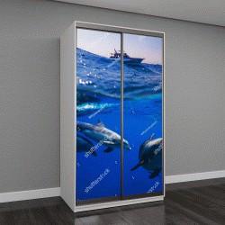 """Шкаф купе с фотопечатью """"три дельфина под водой"""""""