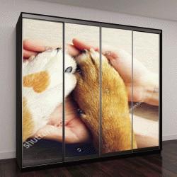 """Шкаф купе с фотопечатью """"Собаки с пятном в виде сердца и руки человека крупным планом, вид сверху"""""""
