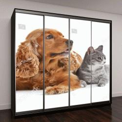 """Шкаф купе с фотопечатью """"Симпатичные собаки и кошки на белом фоне"""""""