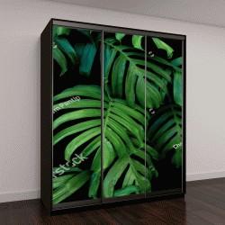 """Шкаф купе с фотопечатью """"Зеленые листья монстеры """""""