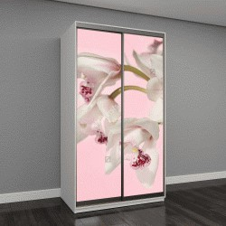 """Шкаф купе с фотопечатью """"Цветок Орхидеи"""""""