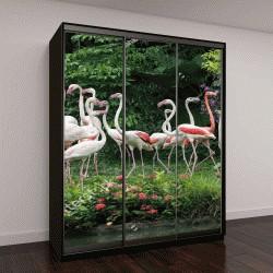 """Шкаф купе с фотопечатью """"Фламинго стоят в озере"""""""