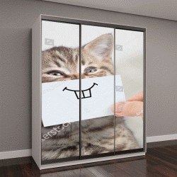 """Шкаф купе с фотопечатью """"забавный кот с улыбкой на картоне """""""