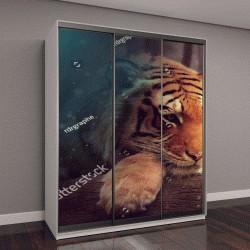 """Шкаф купе с фотопечатью """"Мир фантазий - женщина и гигантский тигр"""""""