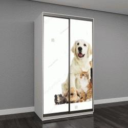 """Шкаф купе с фотопечатью """"набор домашних животных на белом фоне"""""""