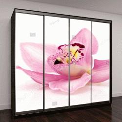 """Шкаф купе с фотопечатью """"Красивые розовые орхидеи на белом фоне"""""""