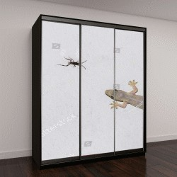 """Шкаф купе с фотопечатью """"Ящерицы едят насекомых """""""