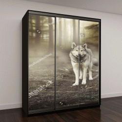 """Шкаф купе с фотопечатью """"серый волк в плену волшебного леса """""""