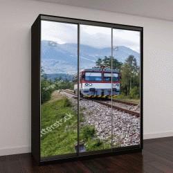 """Шкаф купе с фотопечатью """"поезд альпийских лугах в солнечный день"""""""