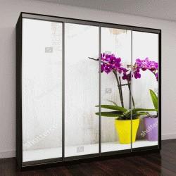 """Шкаф купе с фотопечатью """"Две орхидеи в горшках на деревянном столе"""""""
