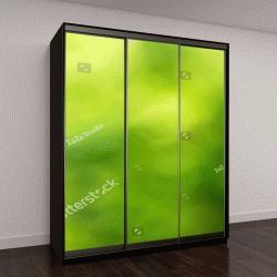 """Шкаф купе с фотопечатью """"Зеленый размытый фон и солнечный свет"""""""
