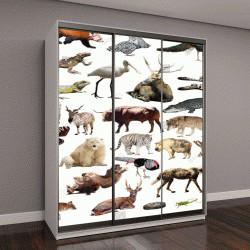 """Шкаф купе с фотопечатью """"Множество диких животных, включая птиц, млекопитающих, рептилий и насекомых"""""""