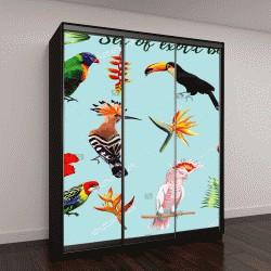 """Шкаф купе с фотопечатью """"Реалистичная коллекция красивых экзотических тропических птиц """""""
