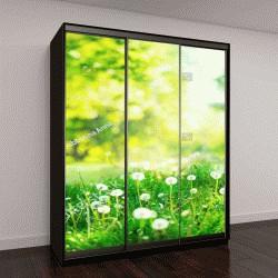 """Шкаф купе с фотопечатью """"Весной на природе"""""""