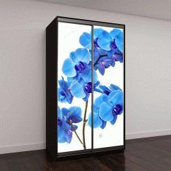 """Шкаф купе с фотопечатью """"Голубая орхидея без фона"""""""