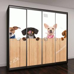 """Шкаф купе с фотопечатью """"группа собак за забором"""""""