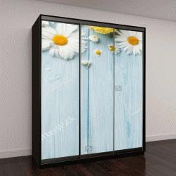 """Шкаф купе с фотопечатью """"Садовые цветы на синем фоне"""""""