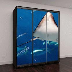 """Шкаф купе с фотопечатью """"Манта плавает под водой среди рыб"""""""